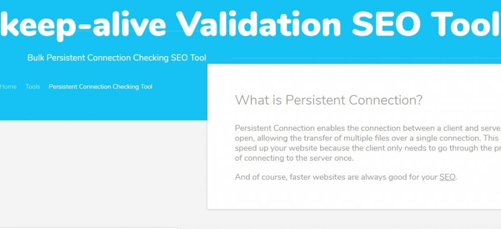 Keep-alive Validation SEO Tool